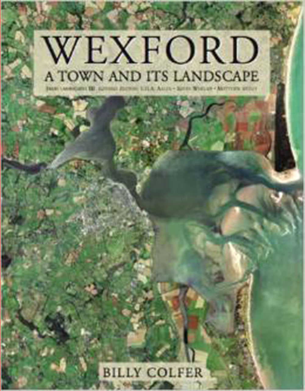 Wexford A Town And Its Landscape