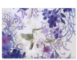 PP Notecard  Pack Hummingbird