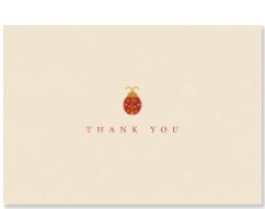 PP Thank You Notecard Pack Ladybug