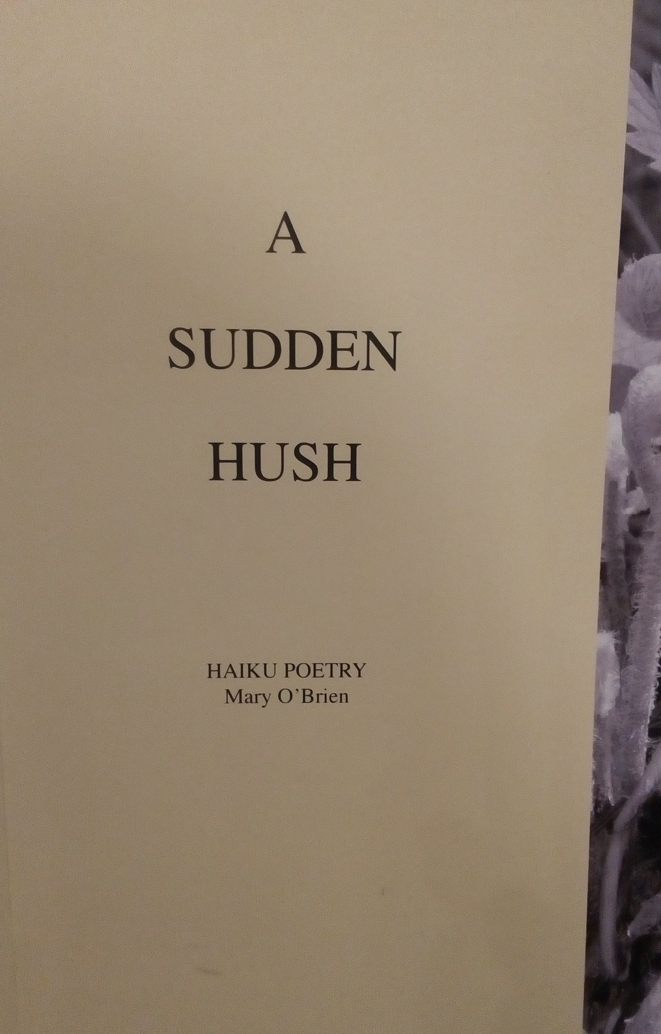 A Sudden Hush by Mary O'Brien