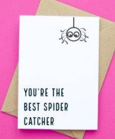 You're The Best Spider Catcher